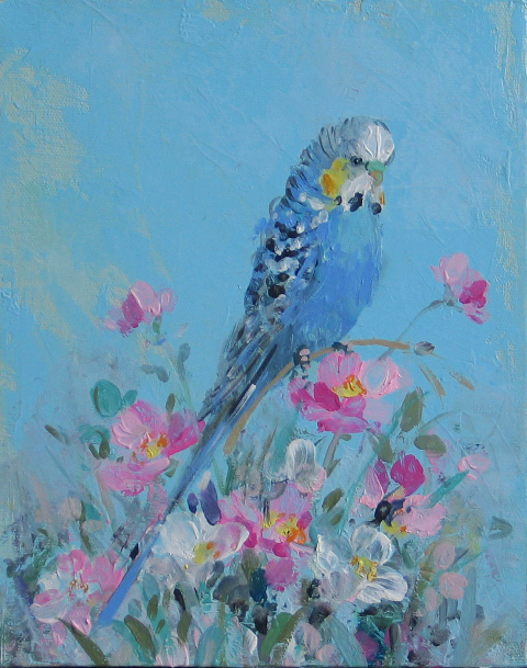 budgerigar_on_blue