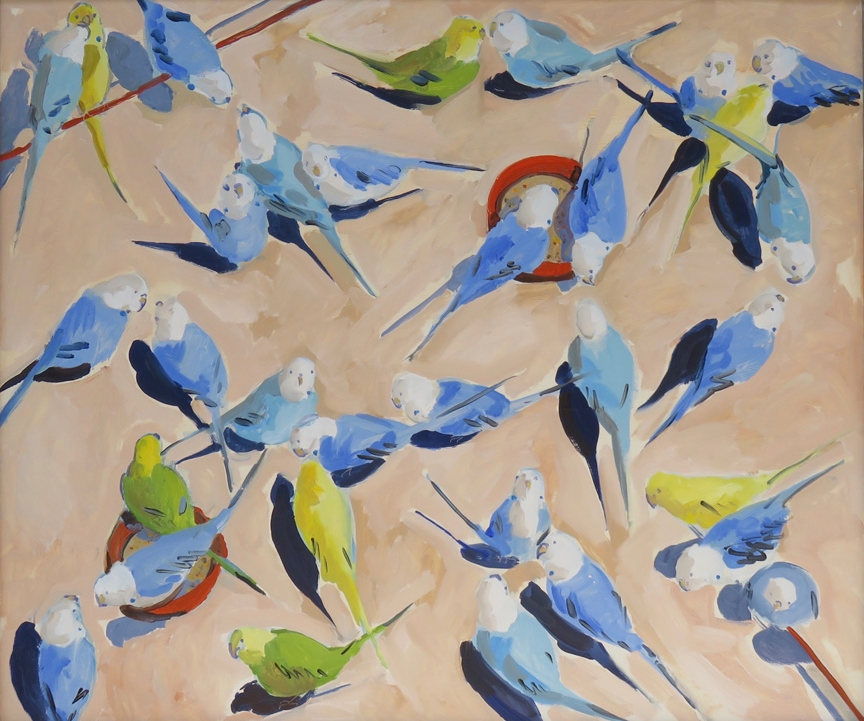 view_budgies-34x40